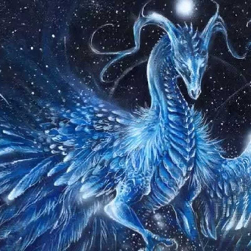10 Best Pictures Of Ice Dragons FULL HD 1080p For PC Background 2020 free download ice dragons youtube 800x800