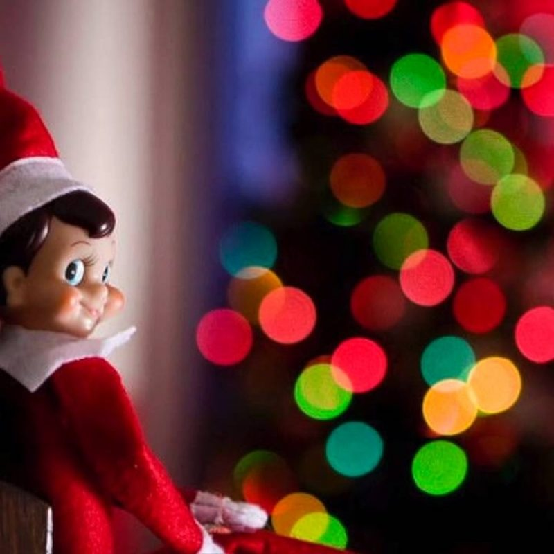 10 Most Popular Elf On The Shelf Wallpaper FULL HD 1080p For PC Desktop 2020 free download if the elf on the shelf was a scary movie trailer youtube 800x800
