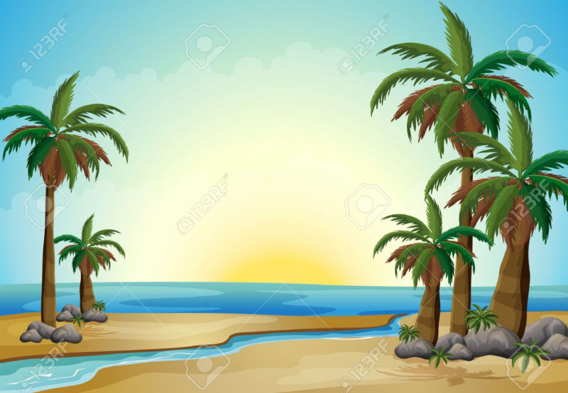 10 New Palm Tree And Beach Pictures FULL HD 1080p For PC Background 2018 free download illustration of the palm trees at the beach royalty free cliparts 800x554