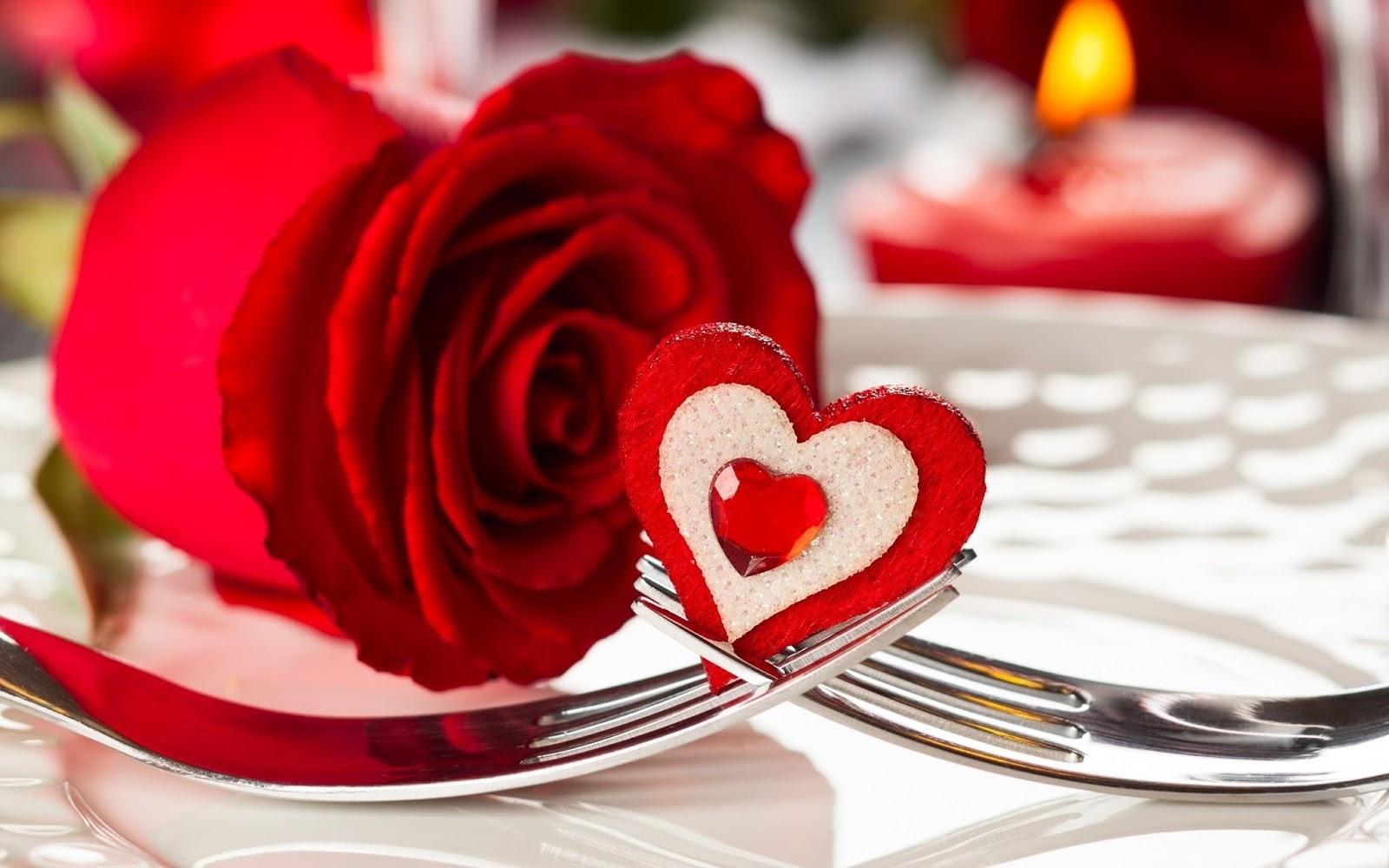 image of love rose hd desktop wallpaper download free 1920x1080