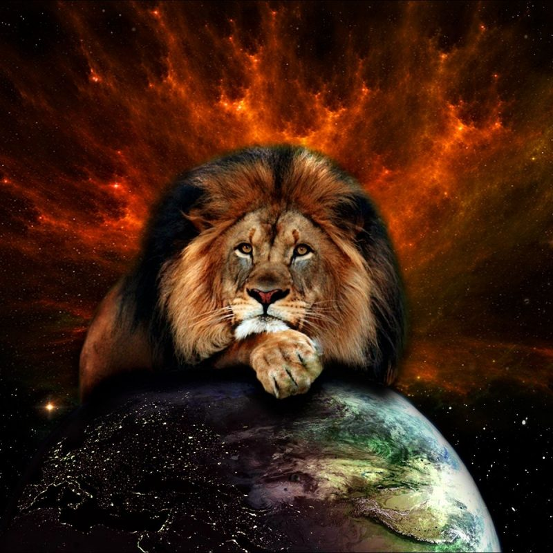 10 Latest Lion Of Judah Images FULL HD 1080p For PC Background 2020 free download image result for real vision of heaven important bible images 800x800