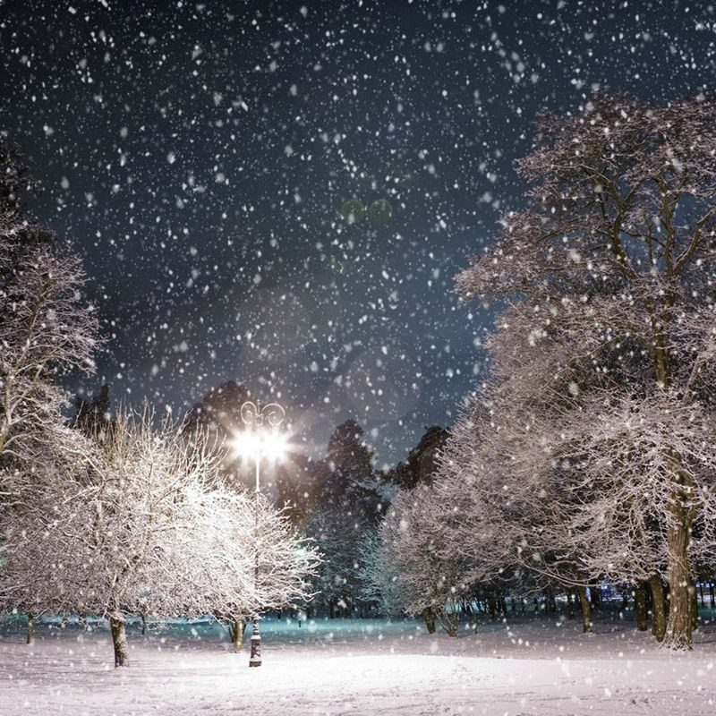 10 New Free Winter Scenes Desktop Backgrounds FULL HD 1080p For PC Background 2018 free download image result for winter wonderland christmas winter pinterest 800x800