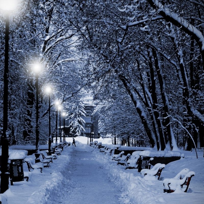 10 Best Snow Desktop Wallpaper Hd FULL HD 1080p For PC Background 2021 free download image wallpaper hd neige winter 2012031318 59 album neige winter 800x800