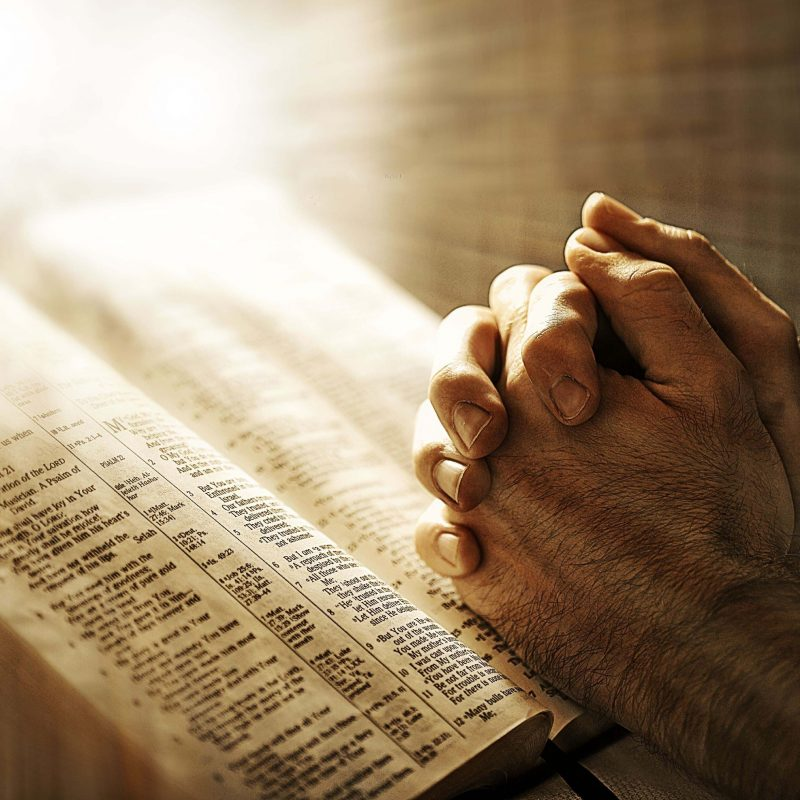 10 Most Popular Praying Hands Wallpaper Hd FULL HD 1920×1080 For PC Background 2020 free download images of jesus praying all wallpapers new jesus and mary 800x800