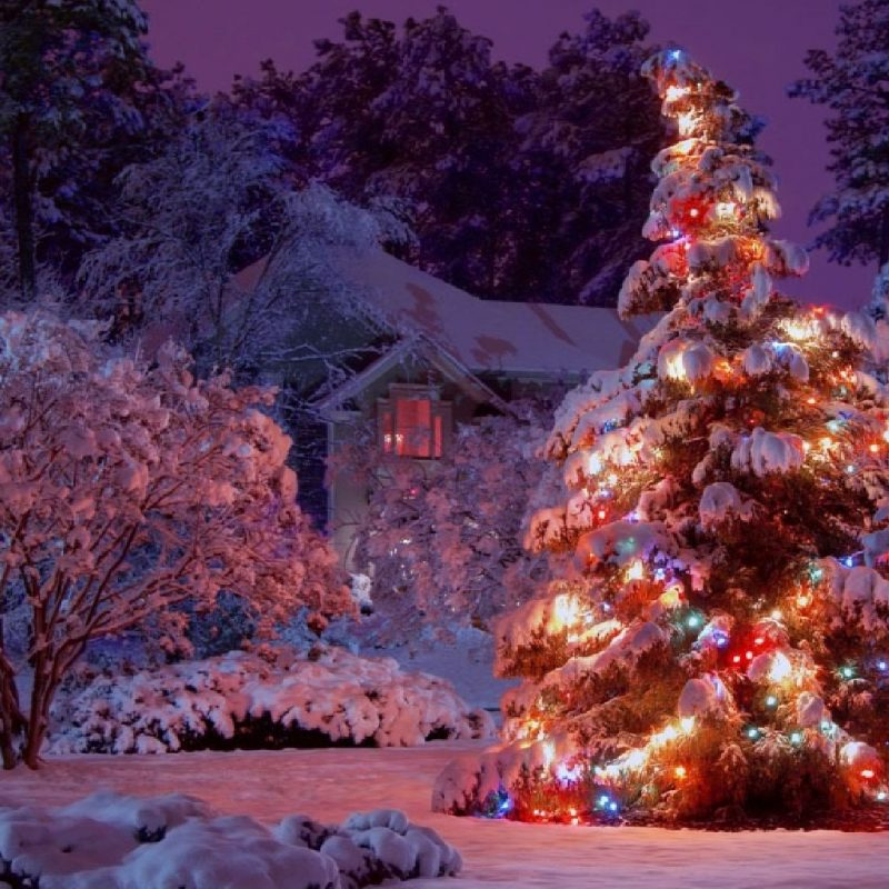 10 Best Winter Christmas Lights Wallpaper FULL HD 1080p For PC Background 2018 free download index of cdn hdwallpapers 320 1 800x800
