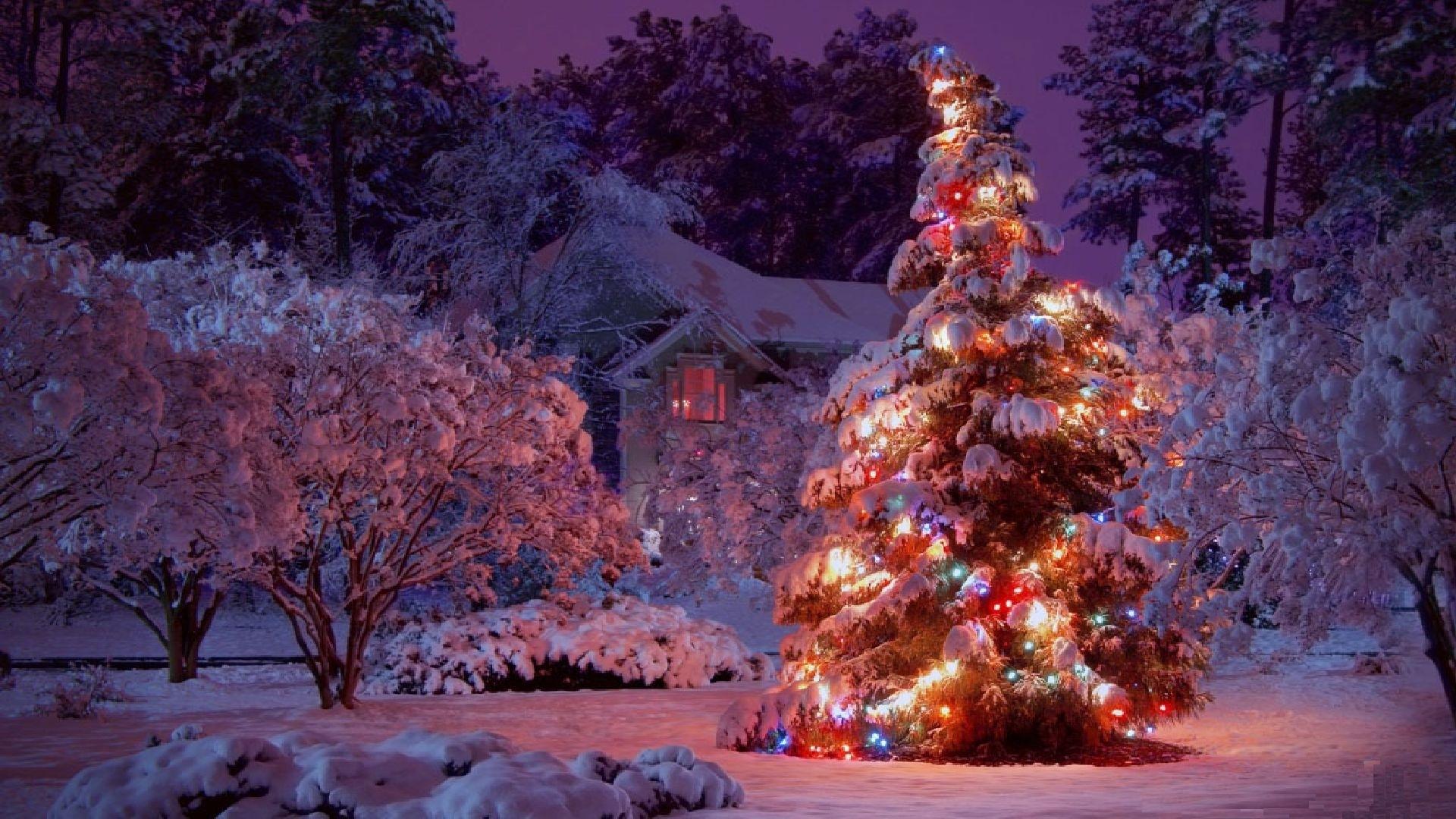 10 Best Winter Christmas Lights Wallpaper FULL HD 1080p ...
