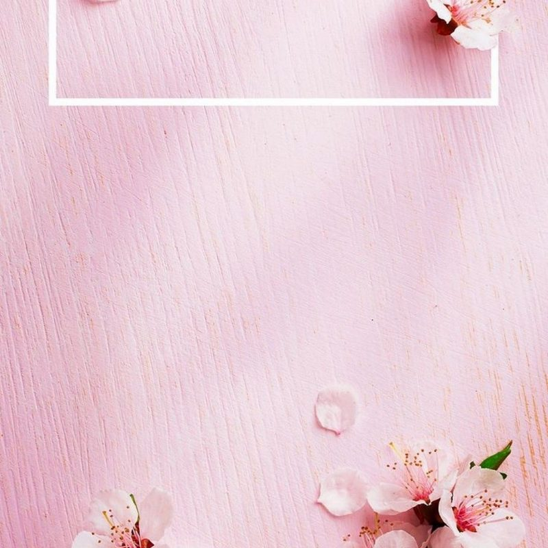 10 Best Wallpaper For Iphone 7 Rose Gold FULL HD 1080p For PC Background 2018 free download iphone x wallpaper rose gold lock screen 2018 iphone wallpapers 800x800