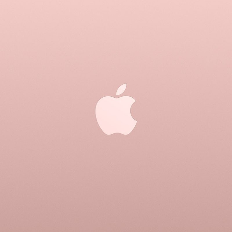 10 Latest Rose Gold Iphone 7 Wallpaper FULL HD 1920×1080 For PC Background 2018 free download iphonepapers iphone 8 wallpaper au15 logo apple pink rose 800x800