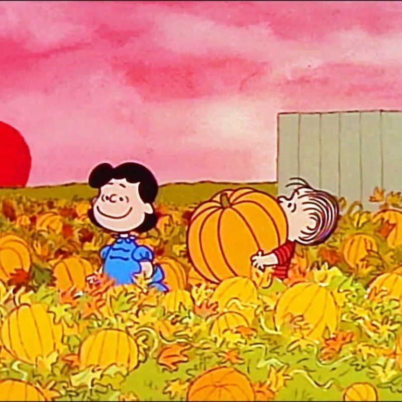 10 Top Charlie Brown Halloween Wallpaper FULL HD 1080p For PC Background 2020 free download its the great pumpkin charlie brown charlie brown pinterest 800x800