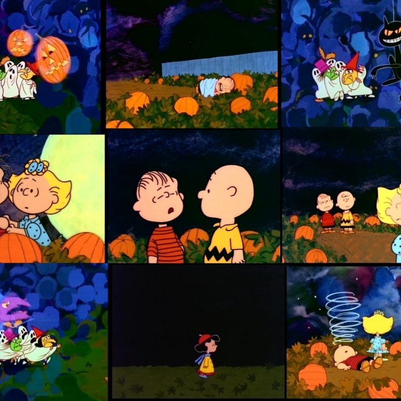 10 Top Charlie Brown Halloween Wallpaper FULL HD 1080p For PC Background 2020 free download its the great pumpkin charlie brown fond decran and arriere plan 800x800