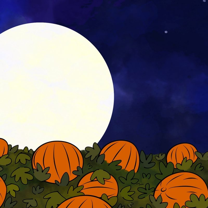 10 Latest The Great Pumpkin Wallpaper FULL HD 1920×1080 For PC Background 2020 free download its the great pumpkin charlie brown full hd wallpaper and 800x800