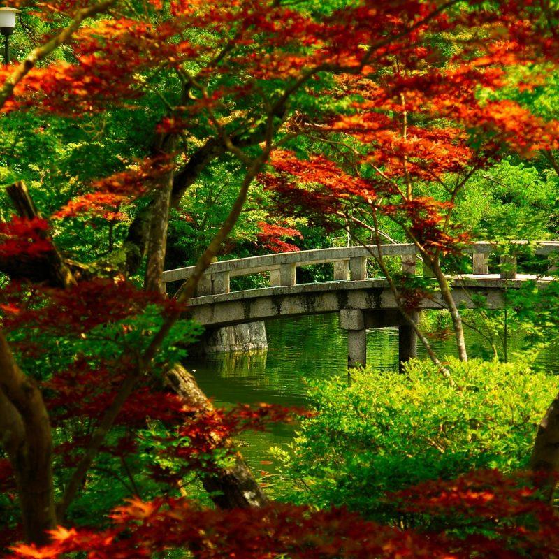 10 Best Japanese Garden Wallpaper 1920X1080 FULL HD 1920×1080 For PC Background 2018 free download japanese garden kyoto e29da4 4k hd desktop wallpaper for 4k ultra hd 3 800x800