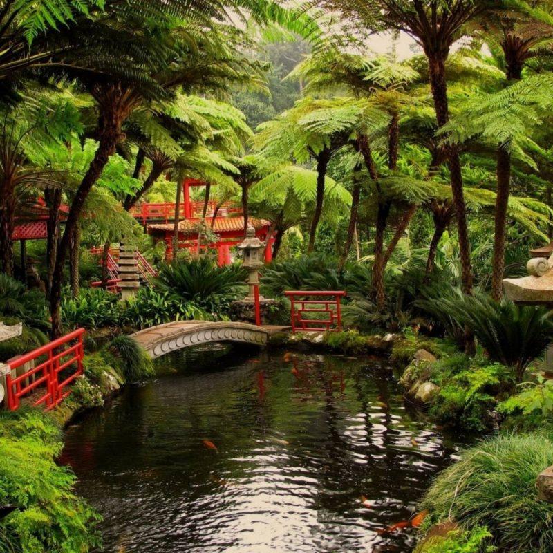 10 Best Japanese Garden Wallpaper 1920X1080 FULL HD 1920×1080 For PC Background 2018 free download japanese garden wallpaper 800x800