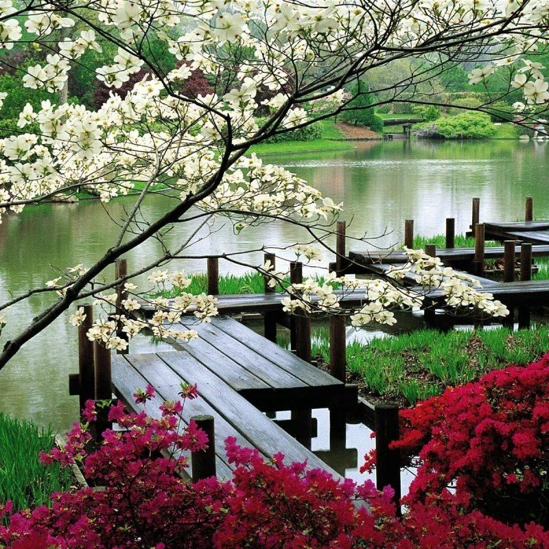 10 Best Hd Japanese Garden Wallpaper FULL HD 1920×1080 For PC Desktop 2018 free download japanese garden wallpapers download hd japanese garden wallpapers 800x800