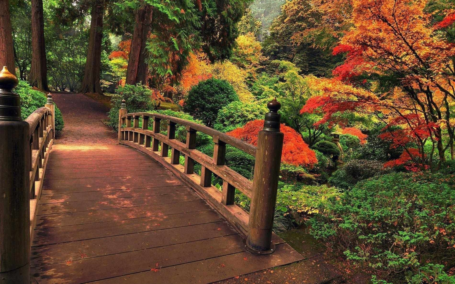 japanese japanese garden wallpaper night gardens wallpapers