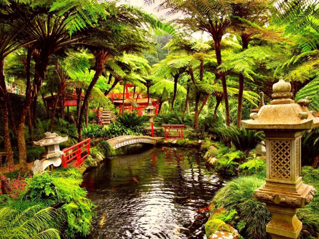 10 Latest Japanese Tea Garden Wallpaper FULL HD 1920×1080 For PC Background 2020 free download japanese tea garden design best of japanese tea garden wallpaper 1024x768