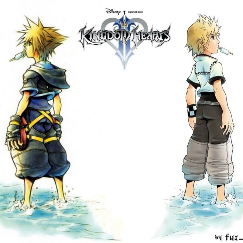 10 Top Sora And Roxas Wallpaper FULL HD 1920×1080 For PC Desktop 2018 free download kingdom hearts 2 sora and roxas wallpaperfut greve on deviantart 2 800x800