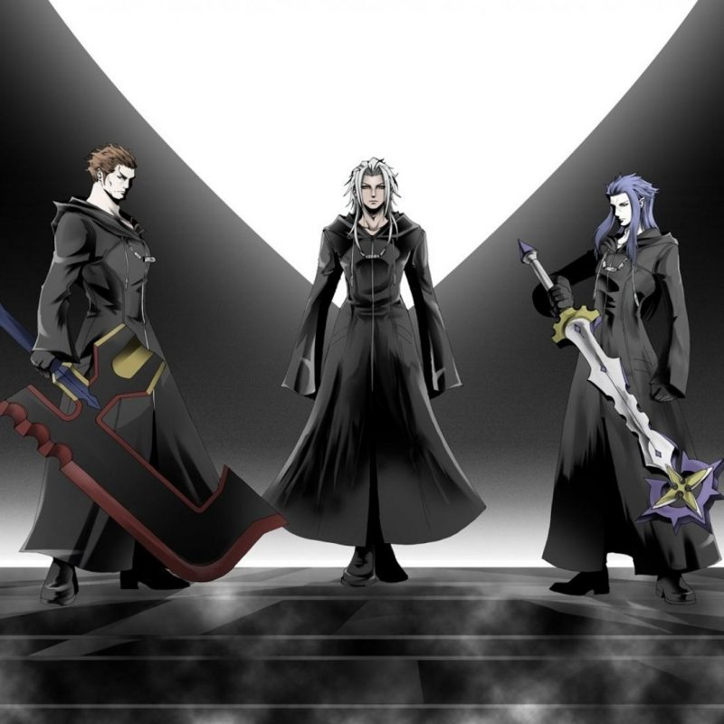 10 Top Kingdom Hearts Organization 13 Wallpaper FULL HD 1080p For PC Background 2018 free download kingdom hearts larxene organization xiii wallpaper 69972 800x800