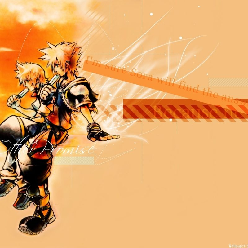 10 Top Sora And Roxas Wallpaper FULL HD 1920×1080 For PC Desktop 2018 free download kingdom hearts sora kingdom hearts roxas popsicles wallpaper 800x800