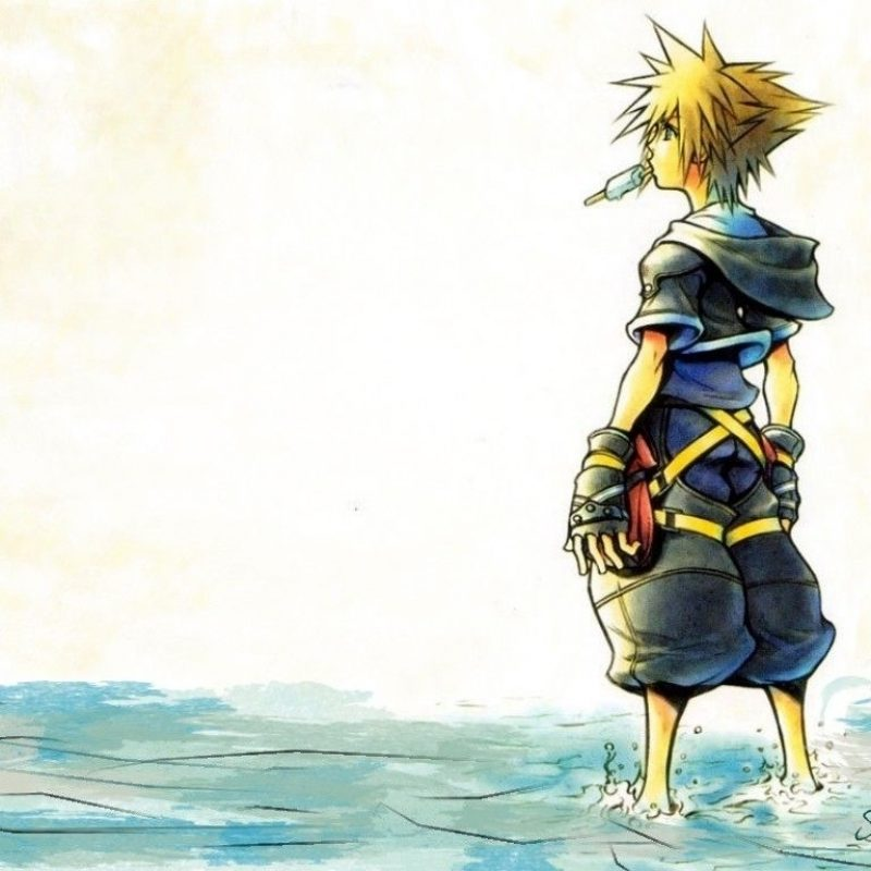 10 New Kingdom Hearts Sora Wallpaper FULL HD 1920×1080 For PC Desktop 2018 free download kingdom hearts sora wallpaper high quality resolution kingdom 800x800