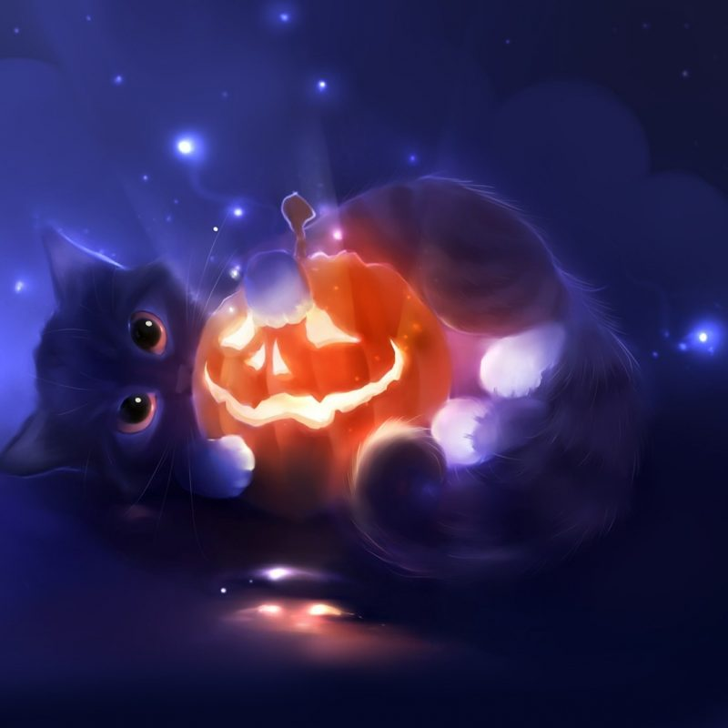 10 New Cute Halloween Kitten Wallpaper FULL HD 1080p For PC Desktop 2018 free download kitten and a jack o lantern wallpaper 2865 800x800