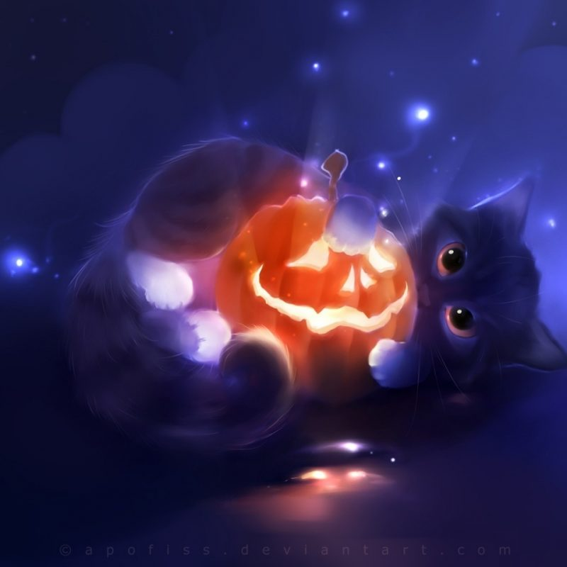 10 New Cute Halloween Kitten Wallpaper FULL HD 1080p For PC Desktop 2018 free download kitty playing with a pumpkin e29da4 4k hd desktop wallpaper for 4k ultra 800x800