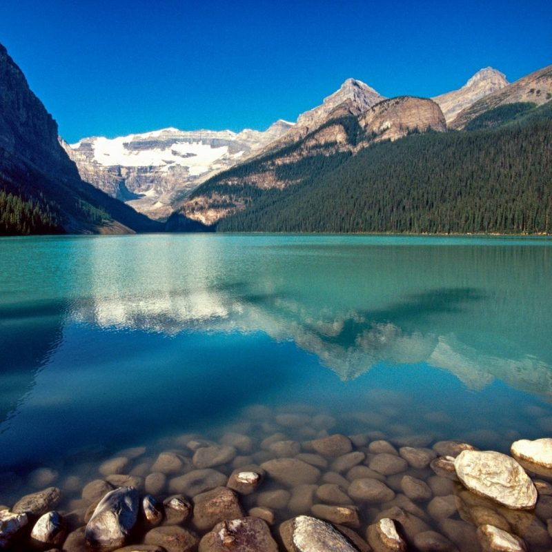 10 Top Lake Louise Canada Pictures FULL HD 1080p For PC Desktop 2020 free download lake louise canada hotels near lake louise lake louise skiing 800x800