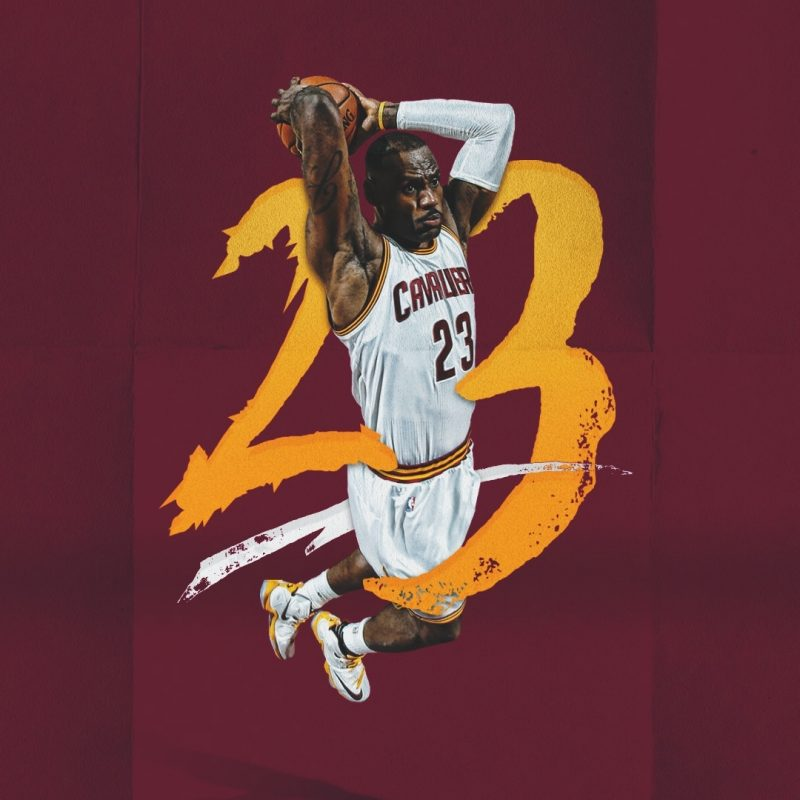 10 Latest Lebron James 2017 Wallpaper FULL HD 1920×1080 For PC Background 2020 free download lebron james wallpaper 2017 c2b7e291a0 800x800