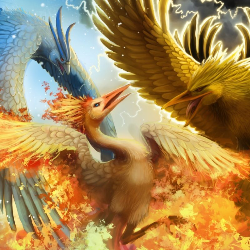 10 Most Popular Legendary Birds Pokemon Wallpaper FULL HD 1920×1080 For PC Background 2020 free download legendary birds articuno zapdos and moltres full hd wallpaper and 800x800