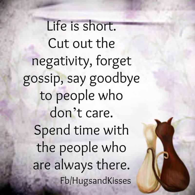 10 New Pictures About Life FULL HD 1920×1080 For PC Background 2021 free download life is short cut out the negativity pictures photos and images 800x800