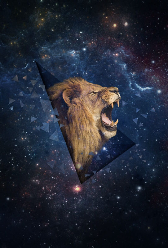 10 Latest Galaxy Lion Wallpaper FULL HD 1920×1080 For PC Background 2018 free download lion galaxy h i p s t e r iphone 5s wallpaper wallpaper space 542x800