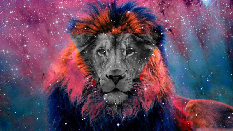 10 Latest Galaxy Lion Wallpaper FULL HD 1920×1080 For PC Background 2018 free download lion galaxy wallpapers top free lion galaxy backgrounds 800x450