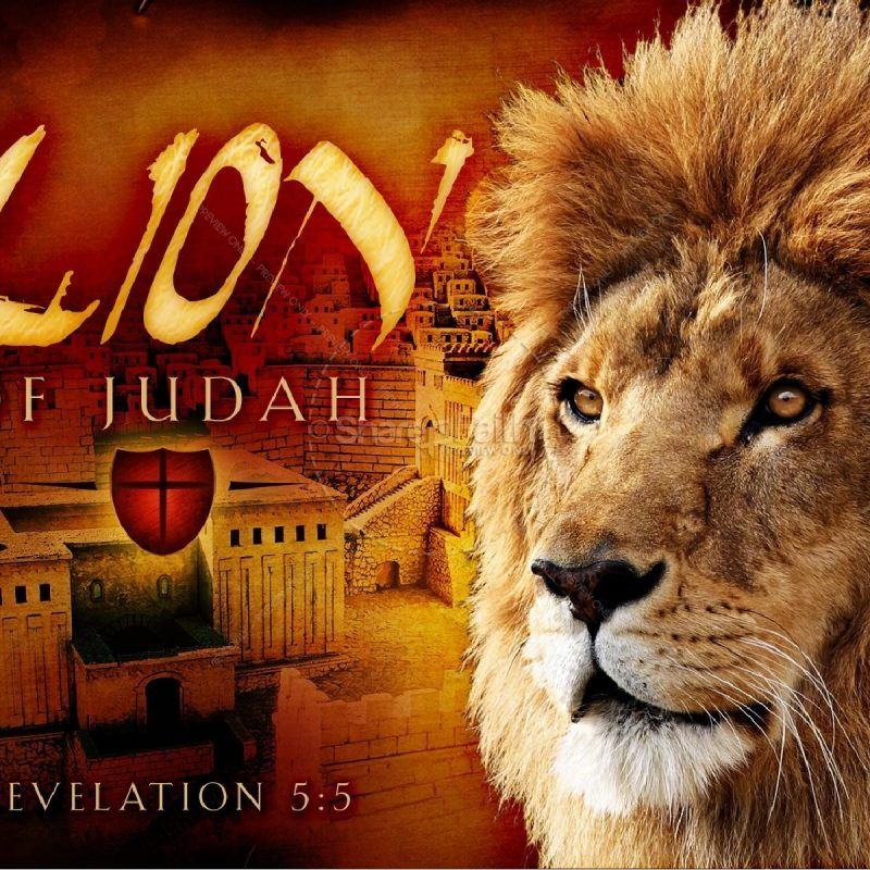 10 Latest Lion Of Judah Images FULL HD 1080p For PC Background 2020 free download lion of judah church powerpoint easter sunday resurrection powerpoints 1 800x800