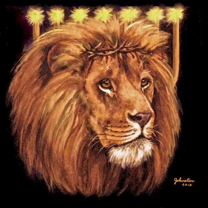 10 Latest Lion Of Judah Images FULL HD 1080p For PC Background 2020 free download lion of judah menorah paintingbob and nadine johnston 1 800x800