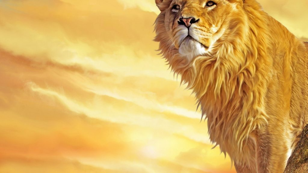 10 Most Popular Hd Lion Wallpapers 1080P FULL HD 1920×1080 For PC Desktop 2018 free download lion wallpapers best wallpapers 1024x576