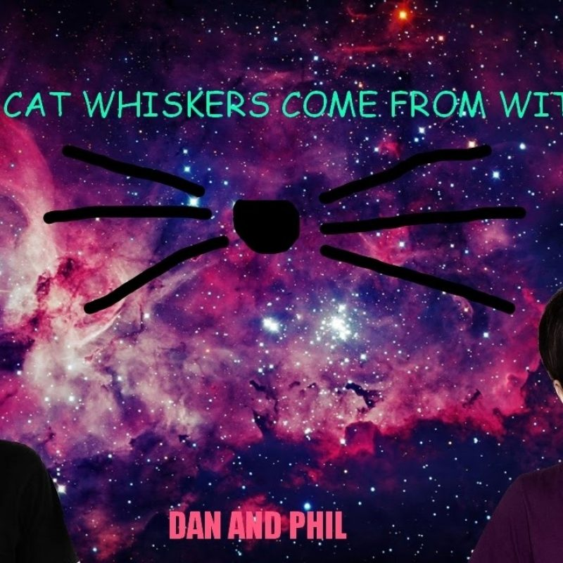 10 Top Dan And Phil Desktop Background FULL HD 1920×1080 For PC Background 2018 free download making a dan and phil wallpaper youtube 800x800