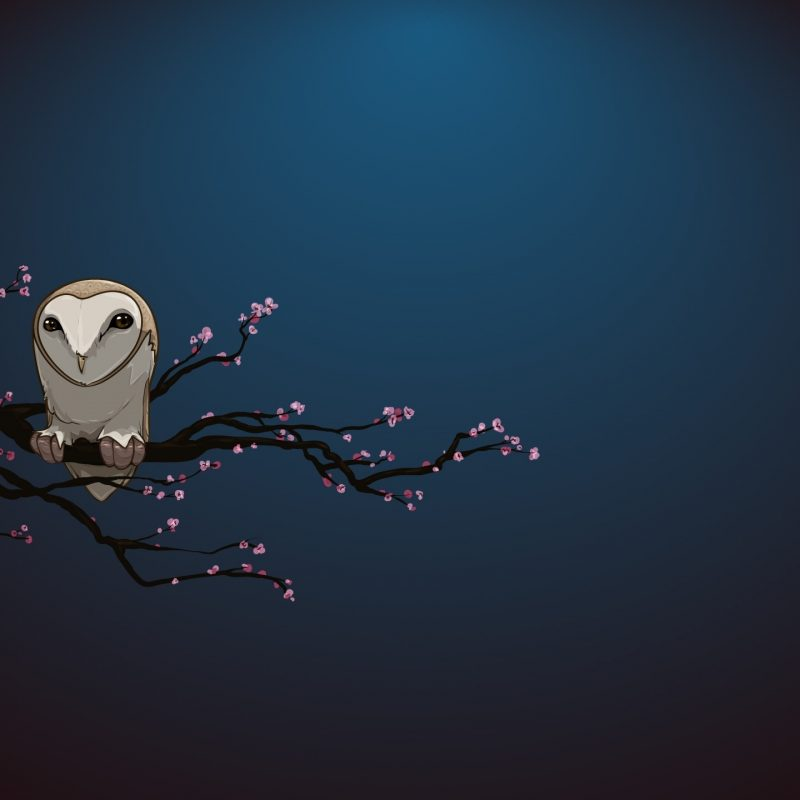 10 Top Owl Art Desktop Wallpaper FULL HD 1920×1080 For PC Desktop 2018 free download masked owl vector art e29da4 4k hd desktop wallpaper for 4k ultra hd tv 800x800