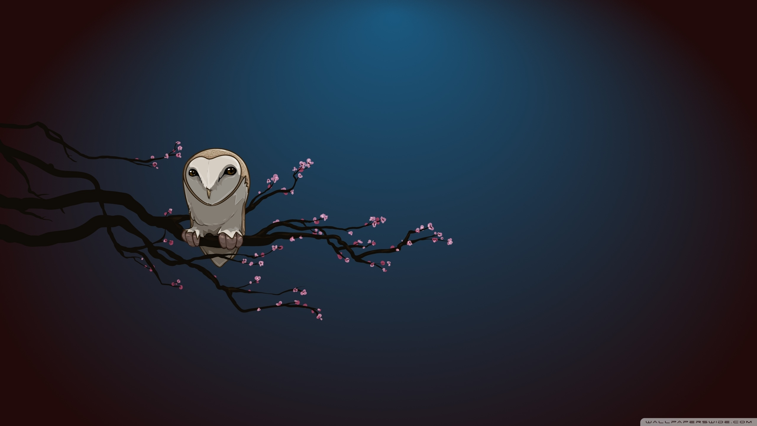 masked owl vector art ❤ 4k hd desktop wallpaper for 4k ultra hd tv