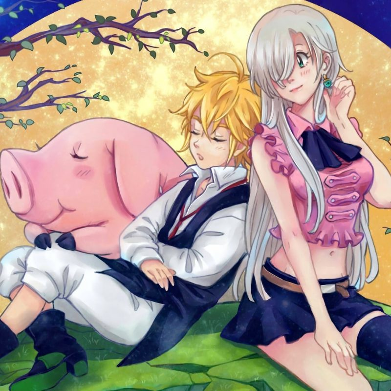 10 New The Seven Deadly Sins Anime Wallpaper FULL HD 1920×1080 For PC Background 2018 free download meliodas elizabeth liones and hawk n wallpaper 2415 800x800