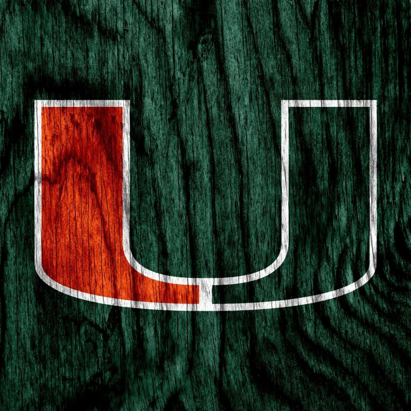 10 New University Of Miami Background FULL HD 1920×1080 For PC Background 2018 free download miami hurricane wallpaper 800x800