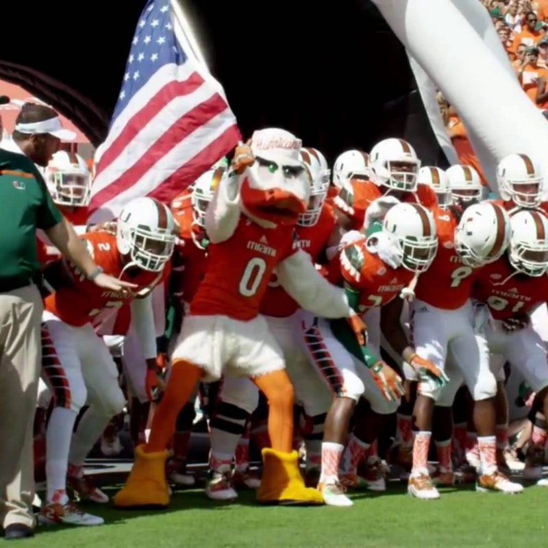 10 Top Miami Hurricane Football Wallpaper FULL HD 1080p For PC Background 2021 free download miami hurricanes 2016 pump up youtube 800x800