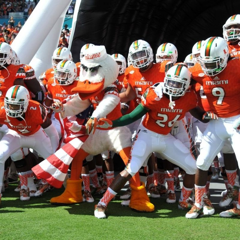 10 Top Miami Hurricane Football Wallpaper FULL HD 1080p For PC Background 2021 free download miami hurricanes football wallpaper hd 2016 iphone2lovely 1 800x800