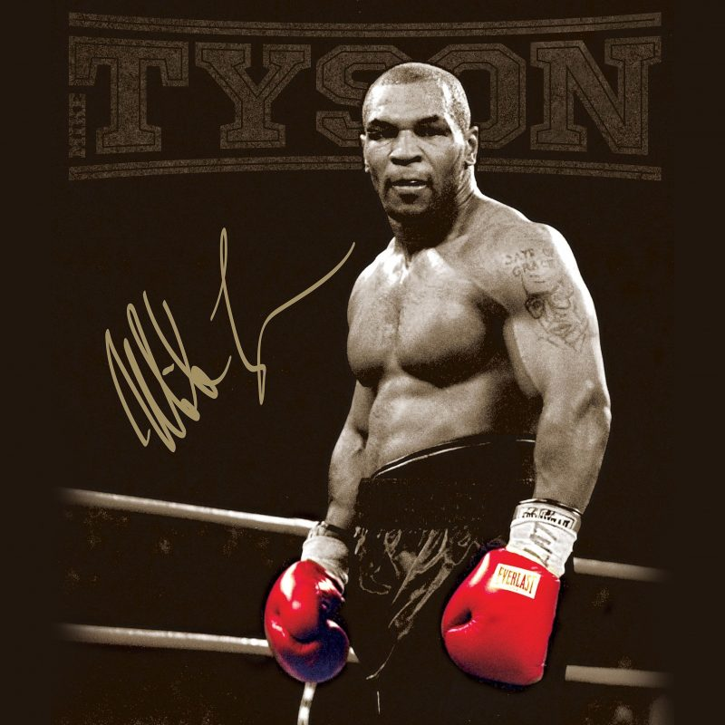 10 Best Mike Tyson Iphone Wallpaper FULL HD 1080p For PC Background 2018 free download mike tyson wallpapers wallpaper cave adorable wallpapers pinterest 800x800