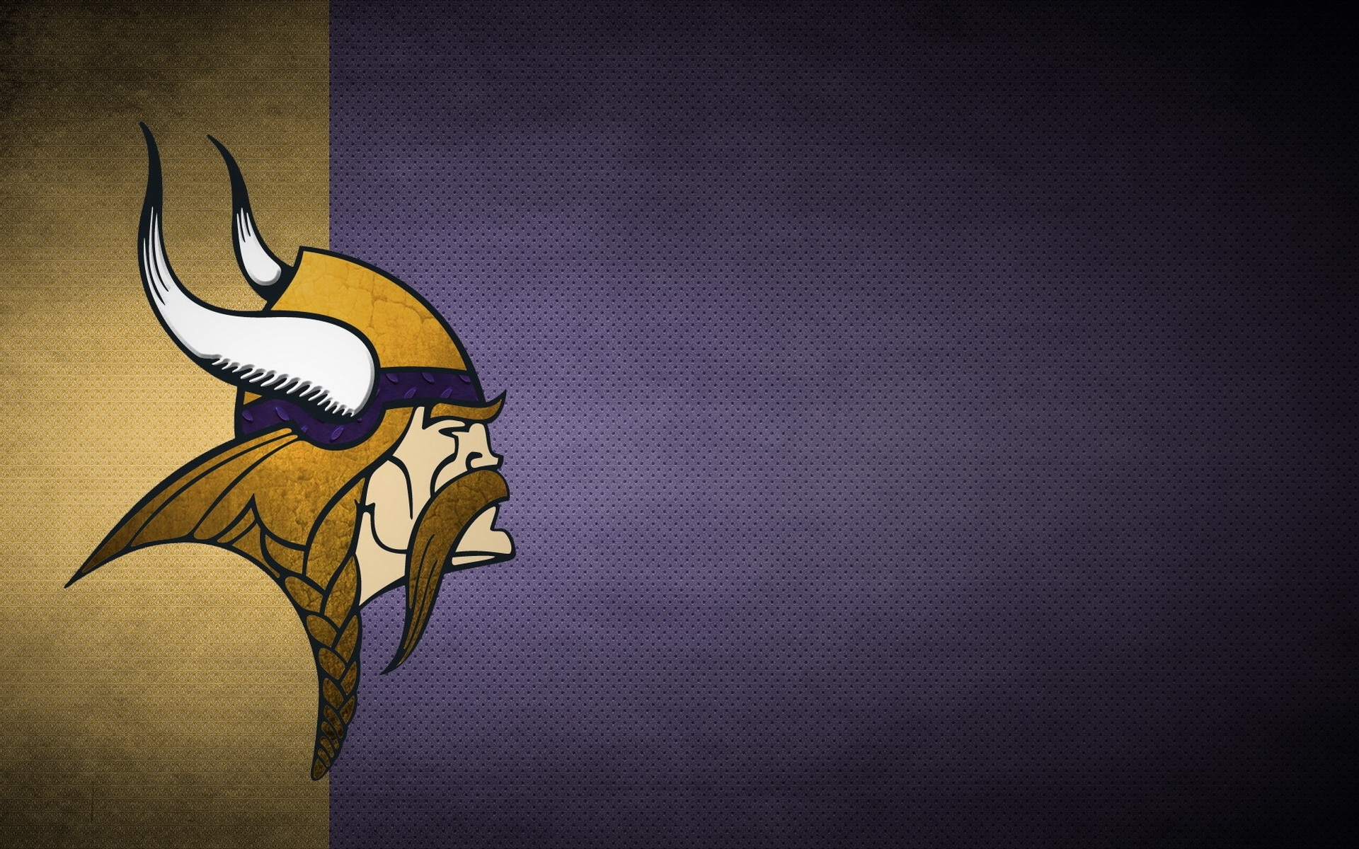 minnesota vikings desktop hd wallpaper 52905 1920x1200 px