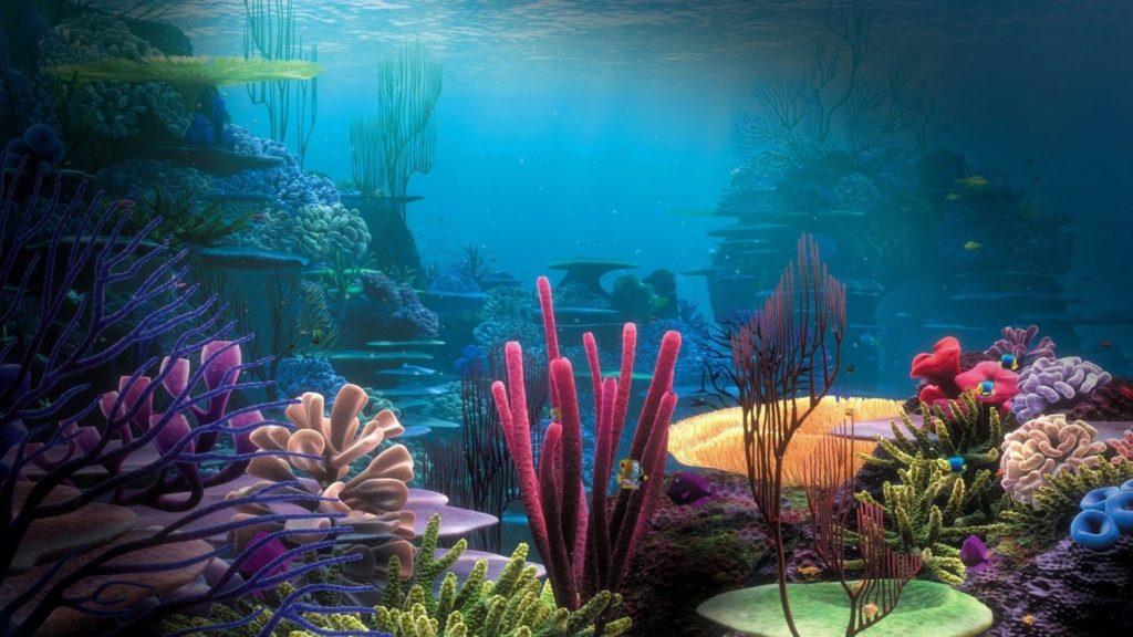10 New Cool Underwater Desktop Backgrounds FULL HD 1920×1080 For PC Desktop 2020 free download misc life coral nature oceans underwater reef reefs sea desktop 1024x576