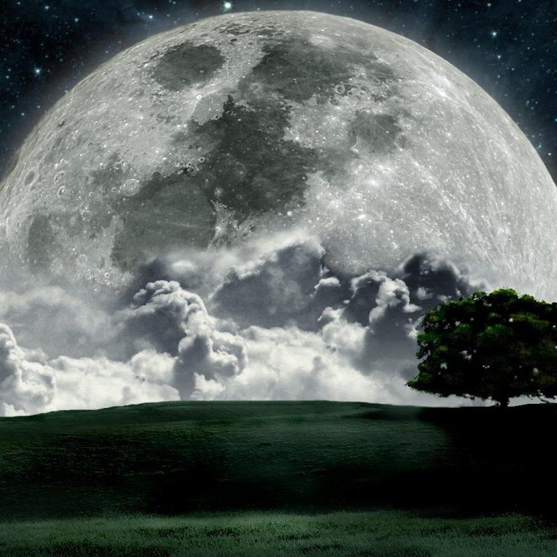10 Latest Moon Hd Wallpaper 1080P FULL HD 1080p For PC Desktop 2020 free download moon hd wallpapers wallpaper cave 1 800x800