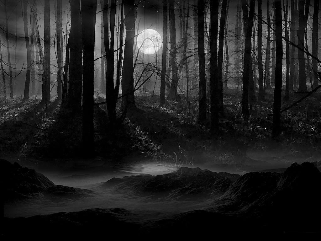 10 Latest Dark Forest Background With Moon FULL HD 1920×1080 For PC Background