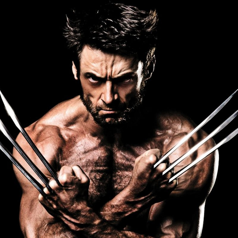 10 Most Popular Wolverine Hugh Jackman Wallpaper FULL HD 1080p For PC Background 2018 free download movies hugh jackman as wolverine wallpapers desktop phone tablet 800x800
