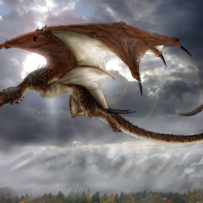 10 Top Pictures Of Dragons Flying FULL HD 1920×1080 For PC Desktop 2018 free download mythical creatures images dragon hd wallpaper and background photos 800x800