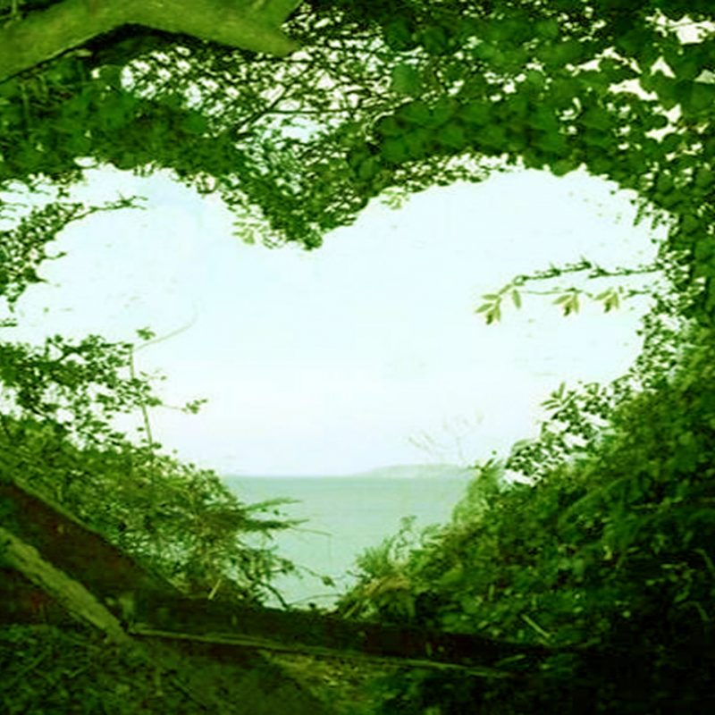 10 New Beauty Love Nature Wallpaper Full Hd 1080p For Pc Desktop